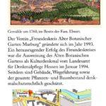 Marburg Botanischer Garden 5 150x150